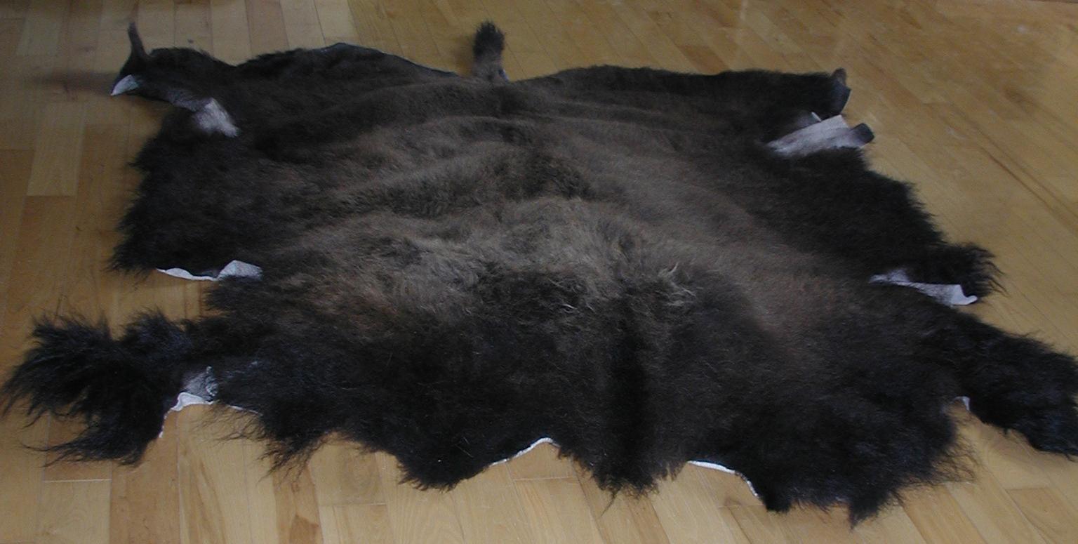 Bison hide